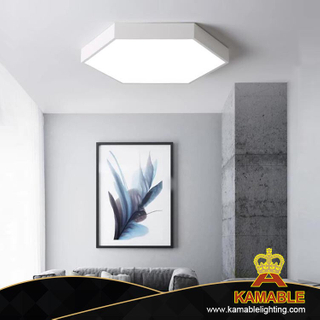 Steel decoration hexahedron LED ceiling lights (KA88013S-1)
